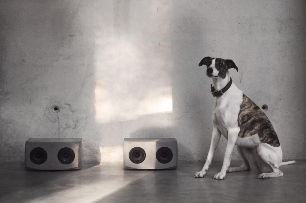 Za ove betonske zvučnike vlada veliko interesovanje, iako još nisu u prodaji