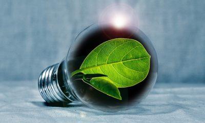 Energetska efikasnost je jedina i najvažnija akcija za smanjenje emisije