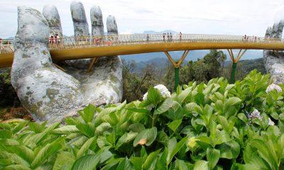 Dizajn ovog mosta potekao je od kompanije nazvane TA Landscape Architecture