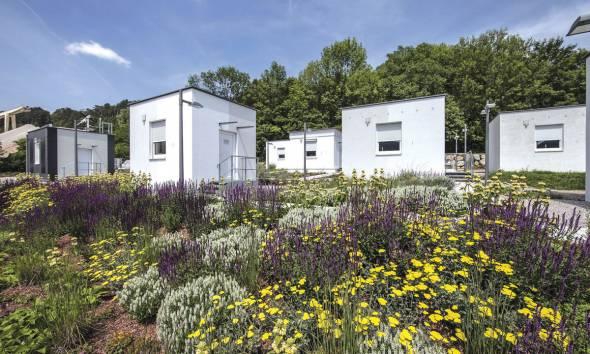 Istraživački park viva u Wopfingu