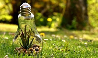 Obnovljivi izvor energije - biomasa, biogoriva, biogas