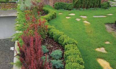 Darwin Garden - uređenje i održavanje zelenih površina