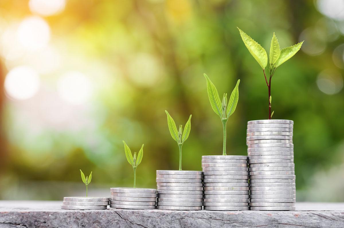Ulaganja u oblasti zelene ekonomije donose korist