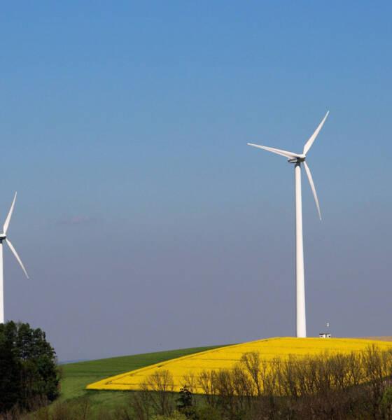 Norveški NBT se pridružuje kompaniji Windvision u realizaciji 800 MW vetroelektrana u Srbiji