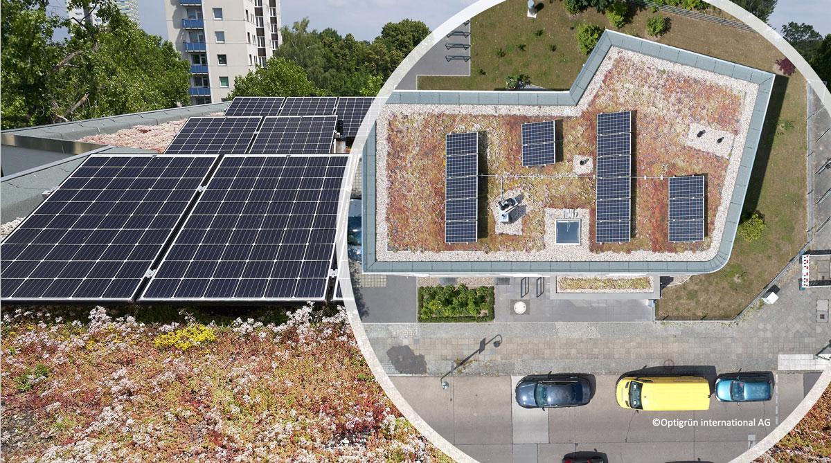 Biosolarni krovovi primeri integracije rešenja baziranih na prirodi