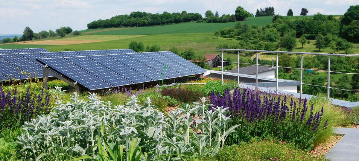 Biosolarni krov